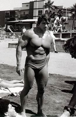 arnold schwarzenegger at muscle beach