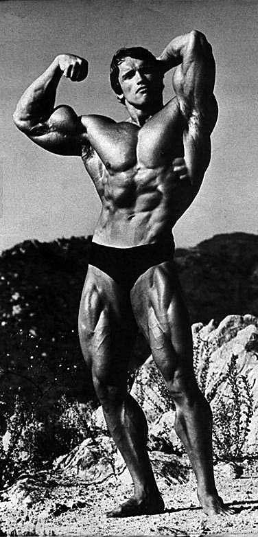 arnold schwarzenegger on mountain