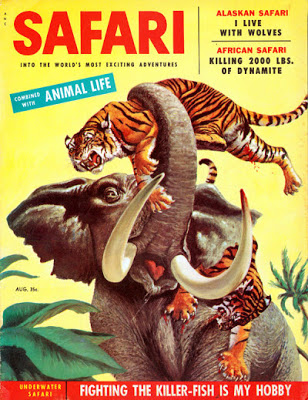 safari magazine