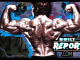 Built Report arnold schwarzenegger back double biceps