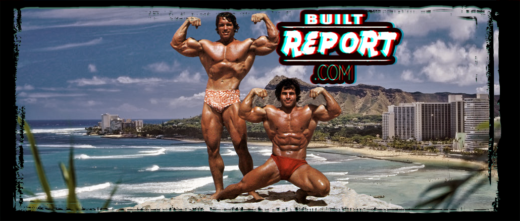 arnold-franco-hawaii-banner