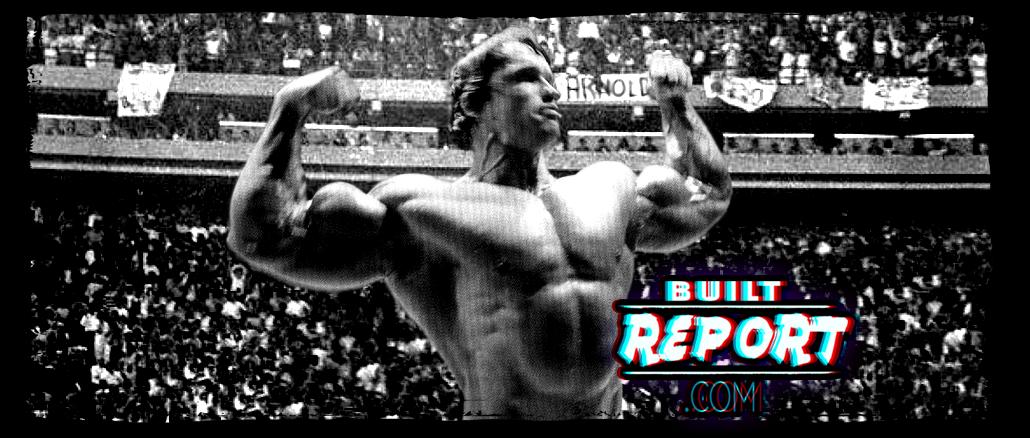 arnold-schwarzenegger-back-double-biceps-banner