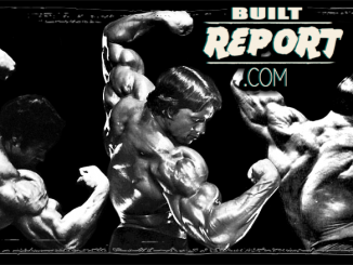 Built Report arnold schwarzenegger back pose