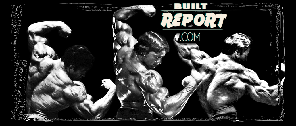 arnold-three-quarter-pose-banner