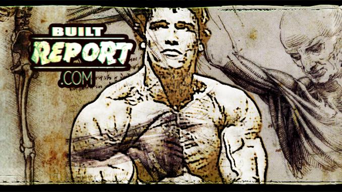 Built Report Arnold Schwarzenegger Upper Chest