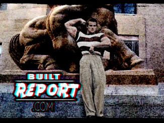 Built Report Steve Reeves