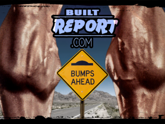 Built Report Calf Bump