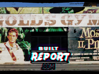 Built Report Morgan the Pirate Steve Reeves