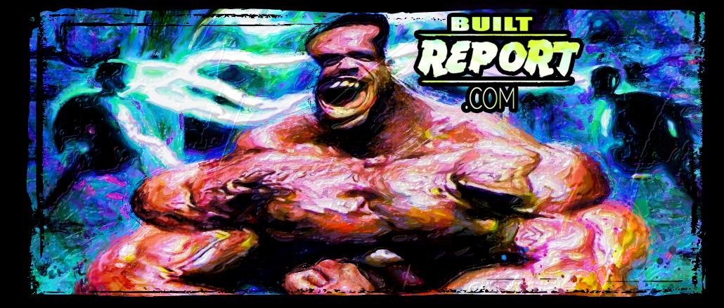 Built Report Paul Dillett Gallery