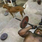 hardcore-gyms-008