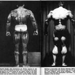 Sergio Oliva and Arnold Schwarzenegger comparison in Weider magazine.