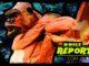 gorilla-banner