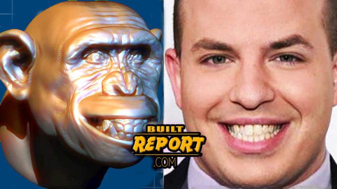 stelter-chimp--