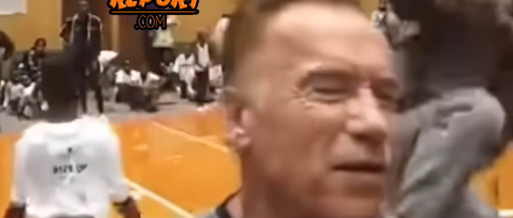 arnold schwarzenegger is attacked in south-africa